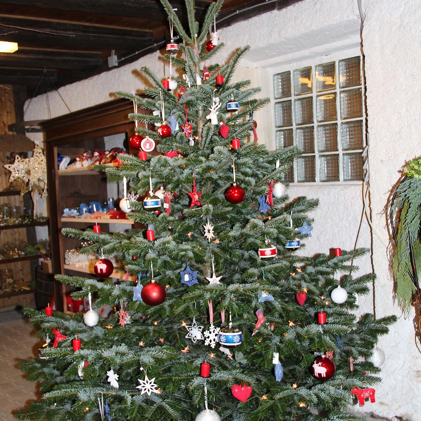 Der Weihnachtsbaum - früher - heute!
