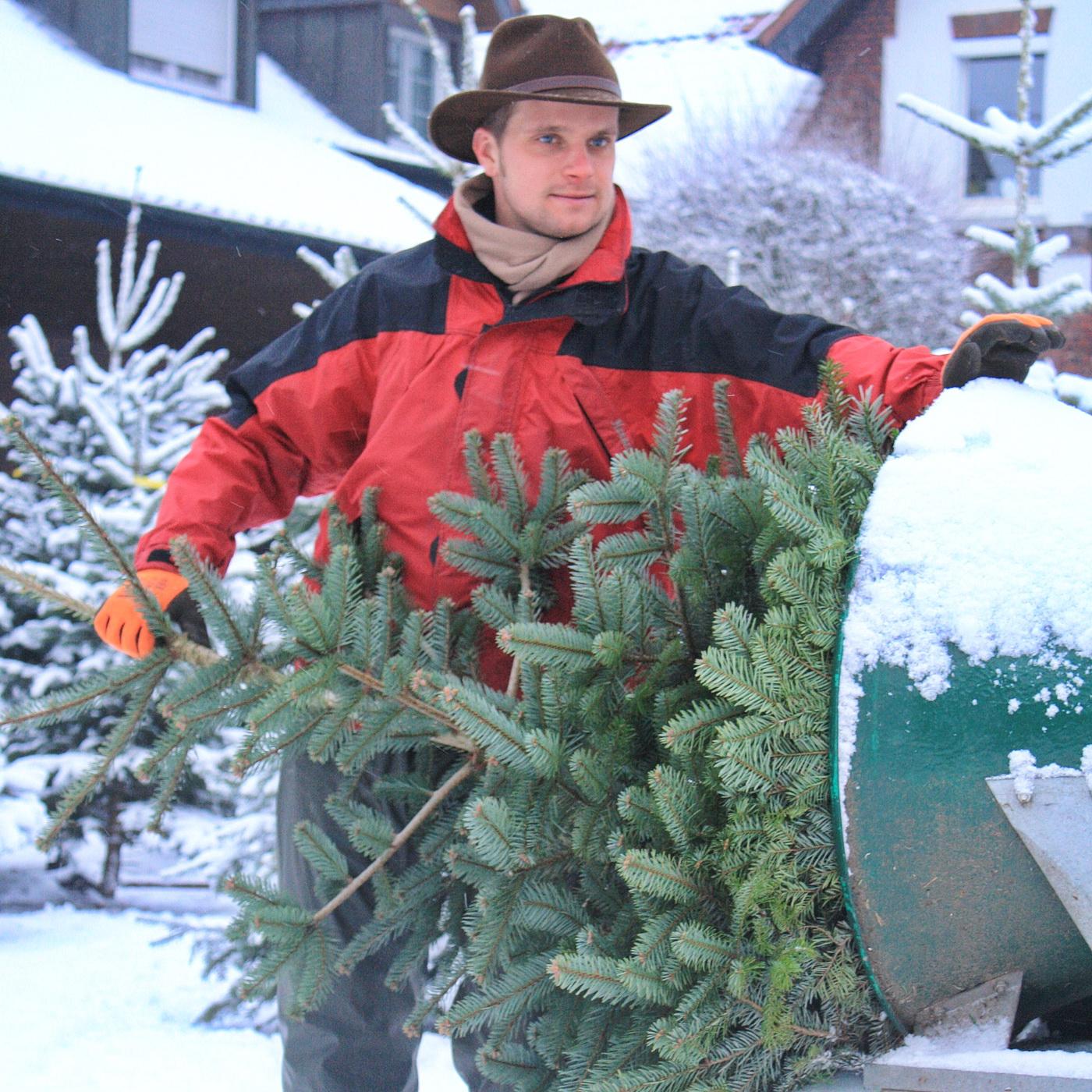 Wir arbeiten das ganze Jahr für schöne Weihnachtsbäume